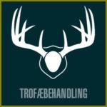 TrophyTreatment-btn-dk